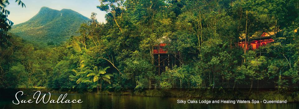 silky-oaks-slider
